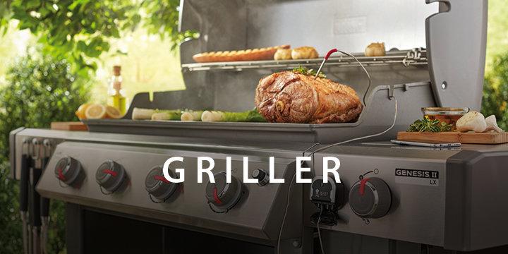 720x360_griller